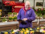 Frank weet alles van flora en fauna: 'Een plant die slap hangt, kun je niet verkopen'