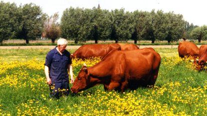De landbouwer die nooit sokken droeg: Zande verliest met André Depreitere (92) tweede icoon in week tijd