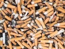 2542 sigarettenfilters en 191 kilo strandvuilnis opgeruimd langs Westlandse kust