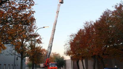 Elektriciteitskast vat vuur in loods op industrieterrein