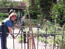 Eigen water voor geneeskrachtige planten Hortustuin
