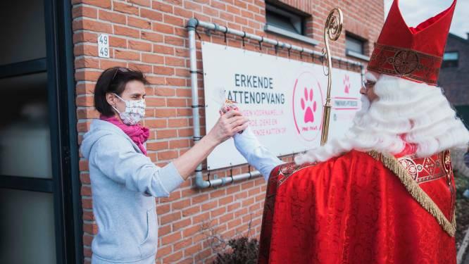 Sinterklaas trekt door Tessenderlo en zamelt geld in voor kattenvereniging in nood