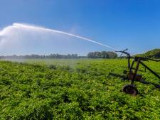 Ook verbod op sproeien met grondwater bij Stelkampsveld Borculo