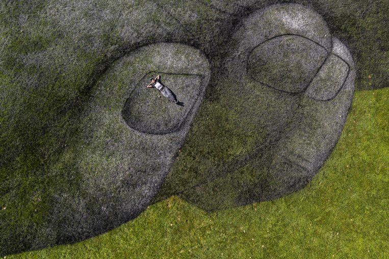 Saype, een Frans-Zwitserse kunstenaar, ligt op zijn biologisch afbreekbare kunstwerk in Parc de la Grange in Genève. De 165 meter lange en 30 meter brede landschapsschildering is gemaakt met houtskool, krijt, water en melkproteïnen. Beeld EPA