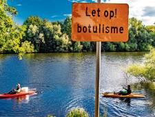 Dode watervogels in Deventer vijvers; waterschap vermoedt botulisme