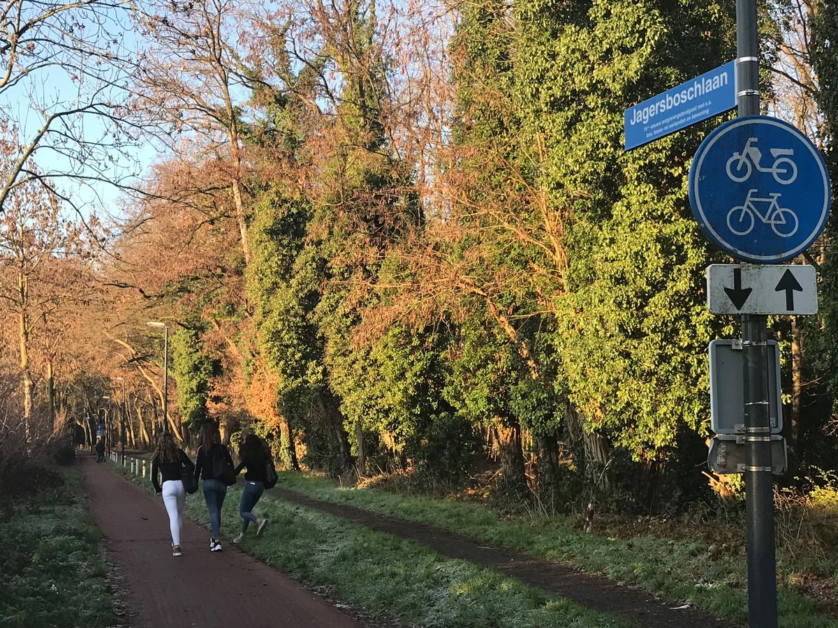 De Jagersboschlaan in Vught is nu een fietspad met een onverhard wandelpad en wordt intensief gebruikt door wandelaars en fietsers.