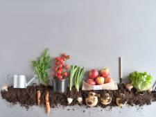 Nooit eerder was productie van biologische voeding wereldwijd zo groot