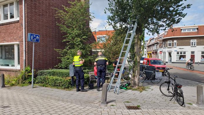 Politie in actie na een melding van dubieuze glazenwassers in de Lindestraat in Zwolle. Uiteindelijk bleek alles in de haak.