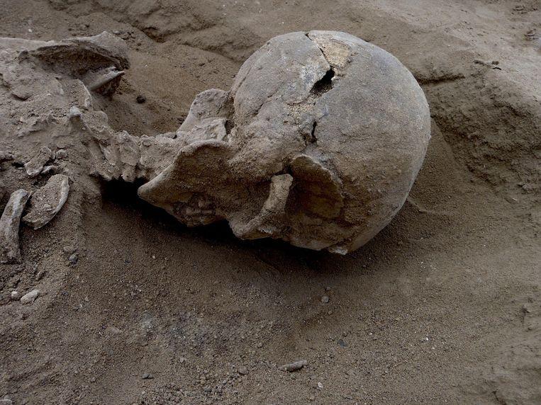 Schedel gevonden in Nataruk, Kenia. Beeld reuters