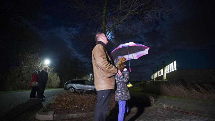 Inwoners van Purmerend proberen een glimp op te vangen van de Oehoe. De provincie Noord-Holland geeft toestemming voor het vangen van de 'terreur-oehoe'. De agressieve vogel valt al weken mensen aan.