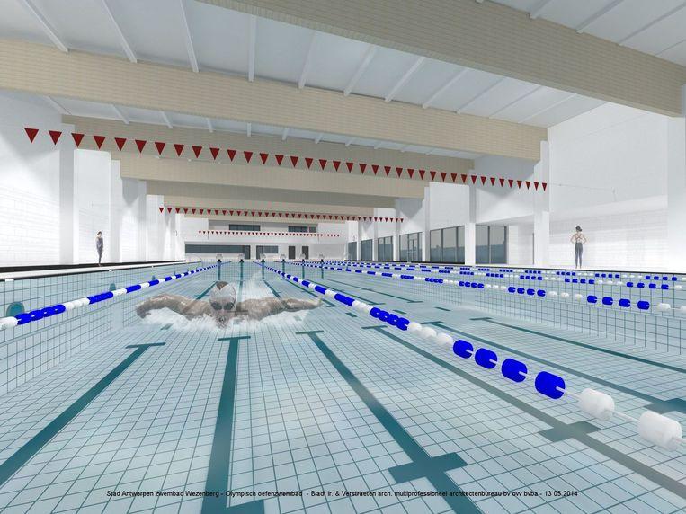 Trainingsbad op maat van topsporters antwerpen regio hln for Zwembad belgie