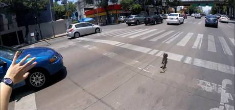 Fietser redt puppy van gruwelijke dood