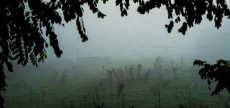 Code geel in Noord-Brabant vanwege dichte mist
