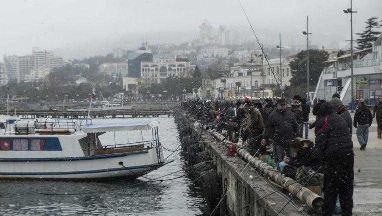 In de haven van Jalta proberen honderden mannen een centje bij te verdienen door vis te vangen. Beeld Geert Groot Koerkamp