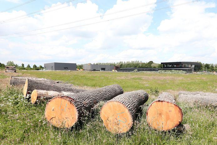 Ontwikkeling van Alasvoort West gaat nog niet voorspoedig. Links ligt bouwbedrijf Schot.