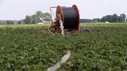 Landbouw heeft vreselijk jaar achter de rug