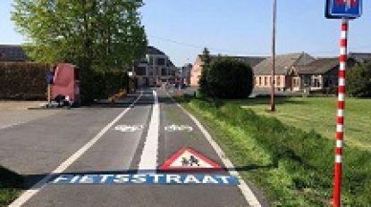Kalmthout krijgt 8 op 10 in grote fietsenquête