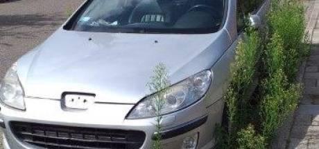 Mysterieuze overgroeide auto na negen maanden eindelijk afgevoerd