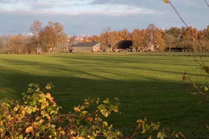 De Sallandse werkgroep vindt de weilanden aan de Molenweg de goede locatie voor woningbouw.