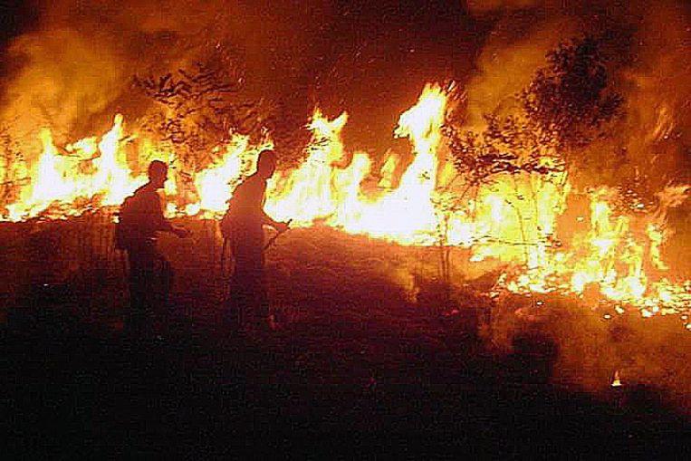 Brandweerlieden bekampen het vuur in de Braziliaanse Amazone.