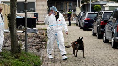 Prostituee onder druk na arrestatie van  zonen van 16 en 17 jaar in verdwijningszaak loodgieter Johan Van der Heyden