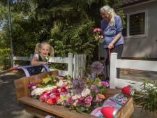 Bloemenmeisje Izis (5) uit Eindhoven bezorgt haar duizendste bosje: 'juist in deze tijd heel welkom'