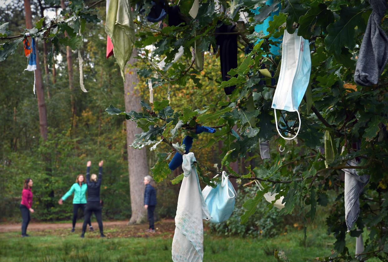 In Overasselt hebben gelovigen mondkapjes in een boom gehangen om genezing te vragen voor zieke familieleden of vrienden.  Beeld Marcel van den Bergh / de Volkskrant
