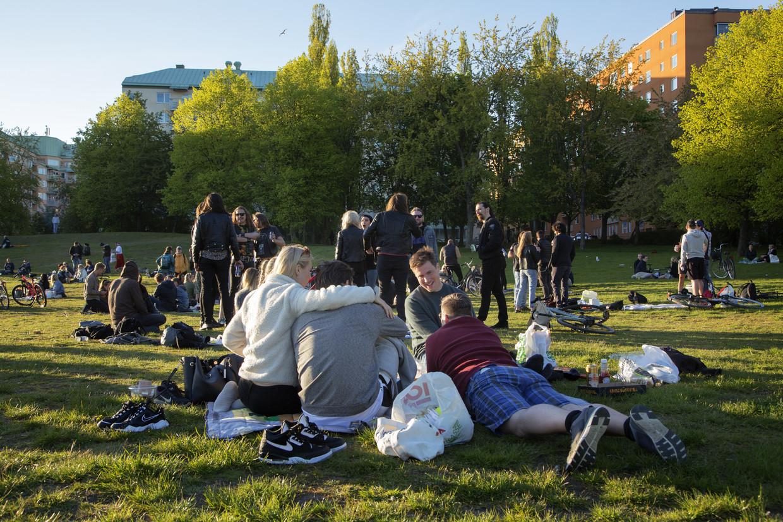 In een park in Stockholm komen mensen (dicht) bij elkaar. Beeld Getty