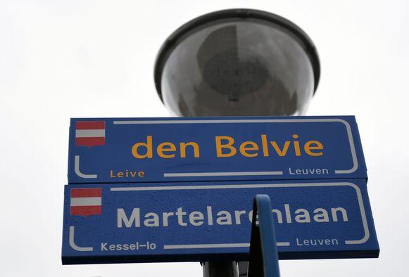 Illustratiebeeld. De bestuurder werd aangetroffen op de Martelarenlaan in Kessel-Lo.