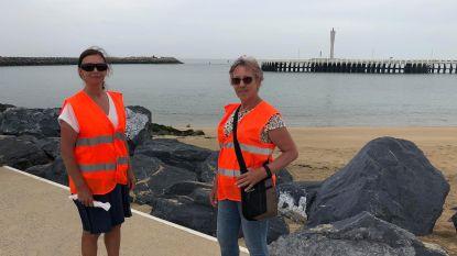 Zes bodyguards voor Oostendse zeehonden