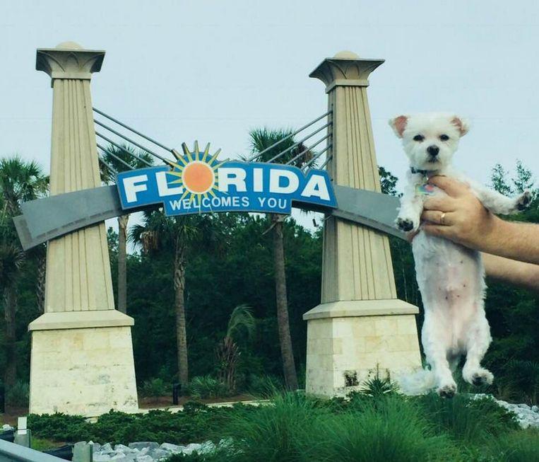 De aankomst van Bentley in Florida
