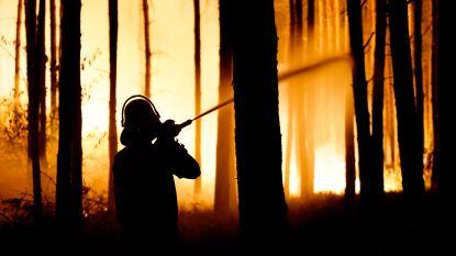 Duitse brandweer houdt vuur bosbranden weg bij dorpen, maar bluswerken bemoeilijkt door munitie in de grond