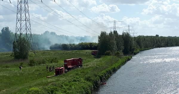 Grote bosbrand Lelystad na ruim vier uur blussen eindelijk onder controle: De grote brand in Lelystad is onder controle.