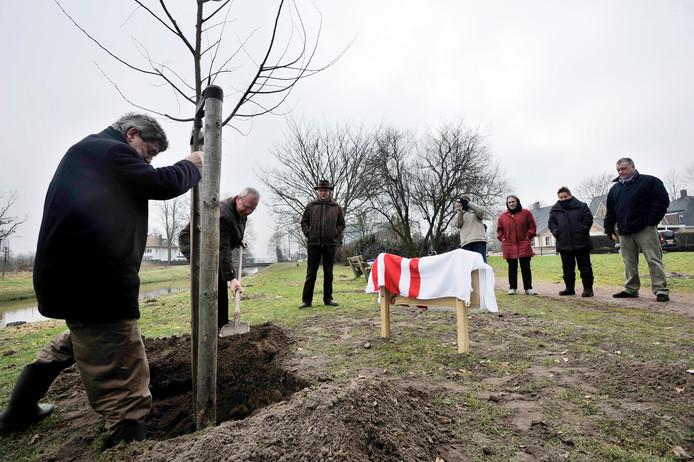 Wethouder Lambert van den Bosch stampt in 2010 de aarde aan in het gat rond het fladderiepje voor Moergestel. Zijn collega Joost Wagenmakers assisteert, terwijl Loek Hilgers (met hoed) en mensen van het Oisterwijkse Biodiversiteitsteam toekijken.