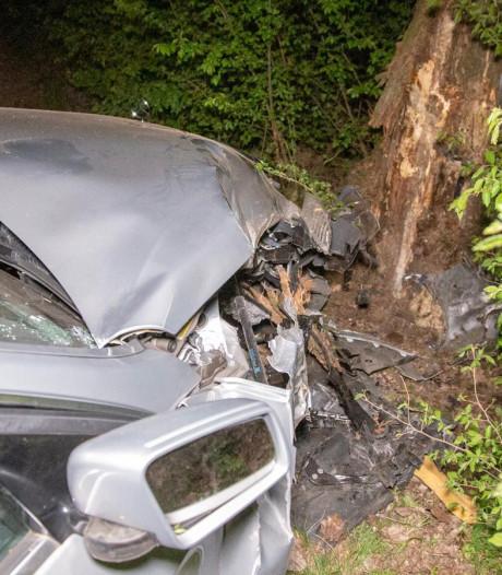 Taxichauffeur raakt lichtgewond door botsing tegen boom in Zetten