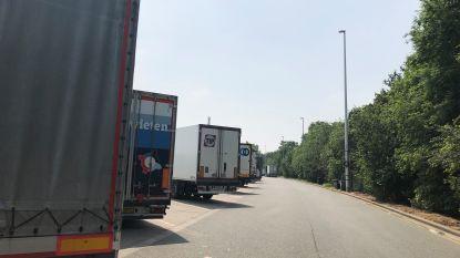 """Bonte furieus na arrestatie van tien transmigranten op snelwegparking Peutie: """"Vlaamse regering komt beloftes niet na"""""""
