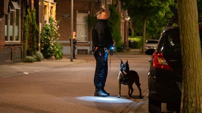 Deventer werd vannacht opgeschrikt door een steekpartij. De politie roept getuigen op om zich te melden.