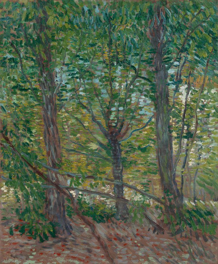 Bomen Parijs, juli 1887. Beeld Van Gogh Museum