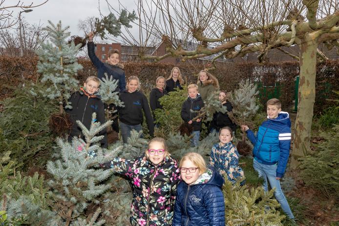 Een groep kinderen ging heel Bodegraven door op zoek naar kerstbomen. Archiefbeeld