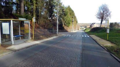 Hinder door wegenwerken op grens Huldenberg-Terlanen