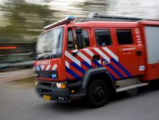 Coniferenhaag in brand in Moerkapelle