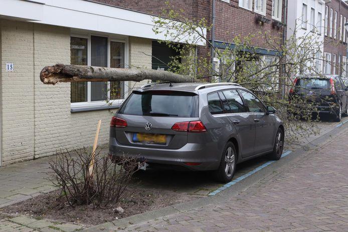 Boom belandt op auto in Boxtel
