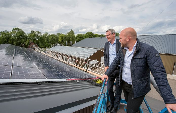 Met zonnepanelen op bedrijfsdaken loopt Ermelo voorop. Eendenslachter Tomassen is een van de grootsten met 5000 panelen.
