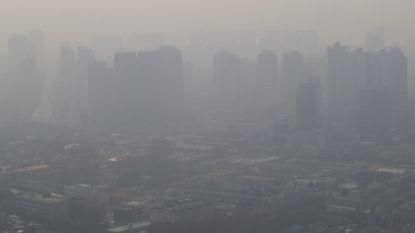 """WHO: """"Luchtvervuiling kost 7 miljoen levens per jaar"""""""