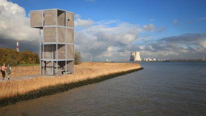 """Doel 2020 in beroep tegen bouw 'containertoren': """"Toren is storend in het landschap"""""""