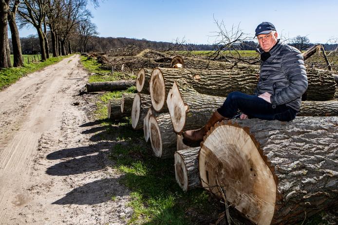 """Feike van der Heide zit op een van de omgekapte bomen langs de Voortseweg. ,,Het mooie aanzicht van dit weggetje is totaal verpest."""""""