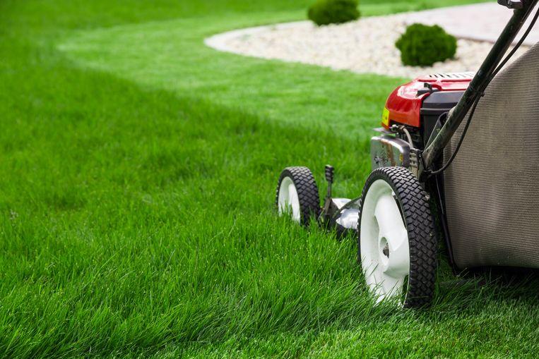 Een elektrische grasmaaier, een met benzine, of een robot: welke is de beste grasmaaier voor jouw gazon?
