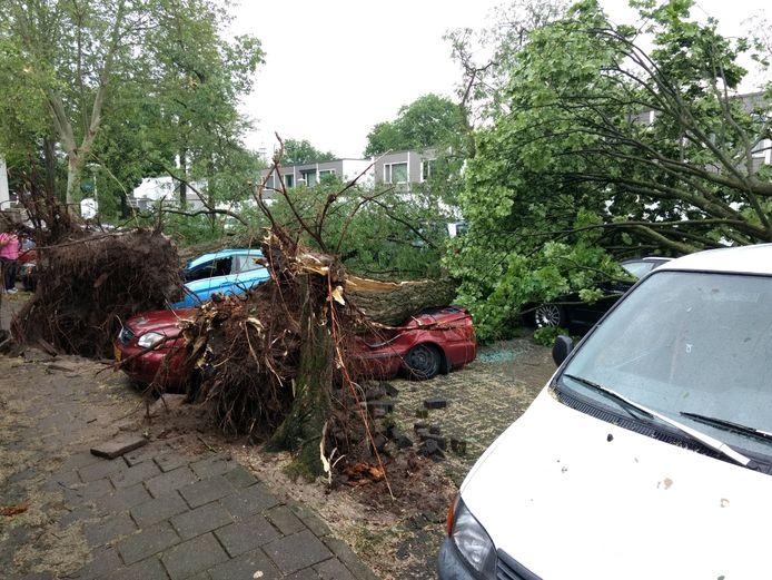 In Tongelre (Eindhoven) zijn meerdere bomen op een parkeerplaats gevallen. Veel auto's zijn beschadigd.