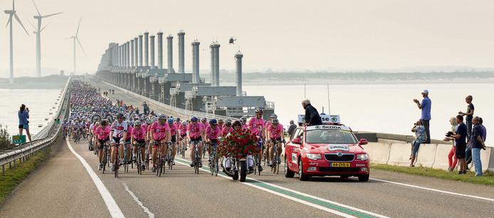 Het peloton van de Delta Ride for the Roses koerst dit jaar voor het eerst door de Westerscheldetunnel.