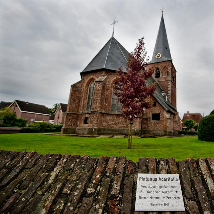 Borne - Vredesboom achter de oude kerk met onlangs onthulde plaquette en gelamineerde papieren vredesduiven in de boom. Editie: HE Foto: Emiel Muijderman  EVM20100920